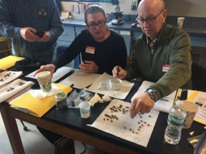 Trainees learn how to analyze nosema in honey bees